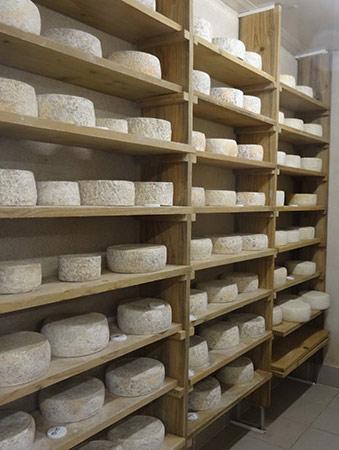 fromage de chevre fermier Ferme de breviande