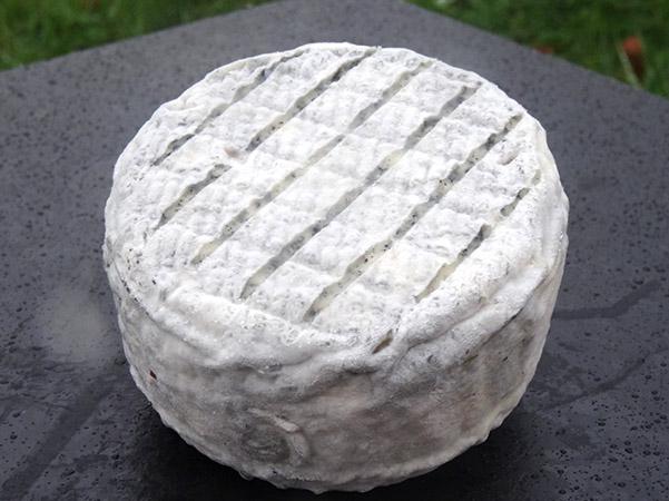 fromage de chevre fermier Ferme de breviande agriculture bio